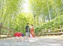 竹林にて結婚式和装前撮りロケ