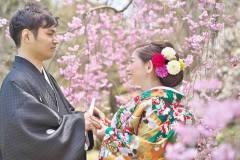 桜に囲まれ和装前撮り