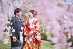 桜と一緒に和装前撮りロケ