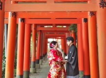 torii-maedori