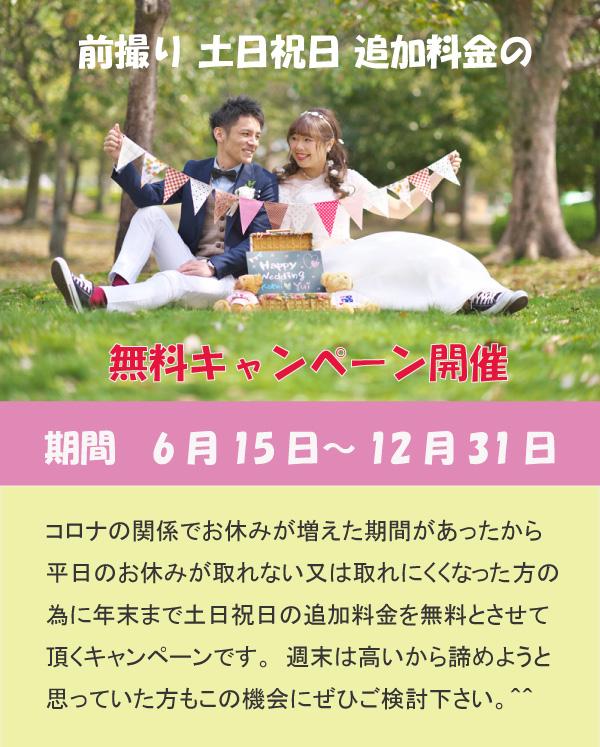 ブルースター前撮りキャンペーン日本庭園や八幡掘り・玄宮園・びわ湖・ひまわりでの撮影も人気